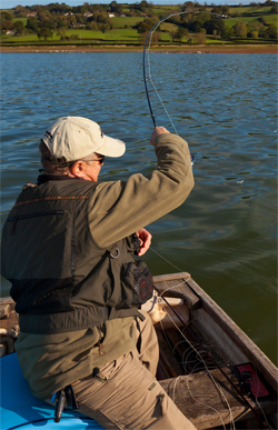 Fly Fishing Rods for Beginners