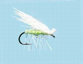 Turrall Caddis /Sedge - Elk Hair Green/White - Ca09