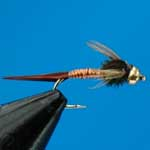 Copper John G.H.Nymph S/S Trout Fishing Fly #12 (N365)