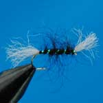 Shipman's Buzzer Black Nymph Trout Fishing Fly #12 (N213)