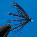 Snipe & Purple Wet Trout Fishing Fly #12 (W238)