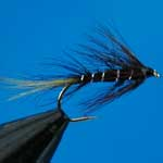 Kate Mclaren Wet Trout Fishing Fly