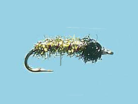 Turrall Twinkling Larvae Olive - Tw04