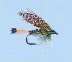 Turrall Wet Winged Sooty Olive - Ww59
