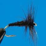 Black Spider Dry Trout Fishing Fly