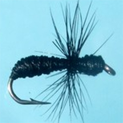 Turrall Ant Black Fly - DG12