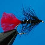 Zulu Black Wet Trout Fishing Fly #10 (W276)