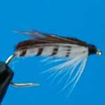 Corixa Nymph Trout Fishing Fly #12 (N39)