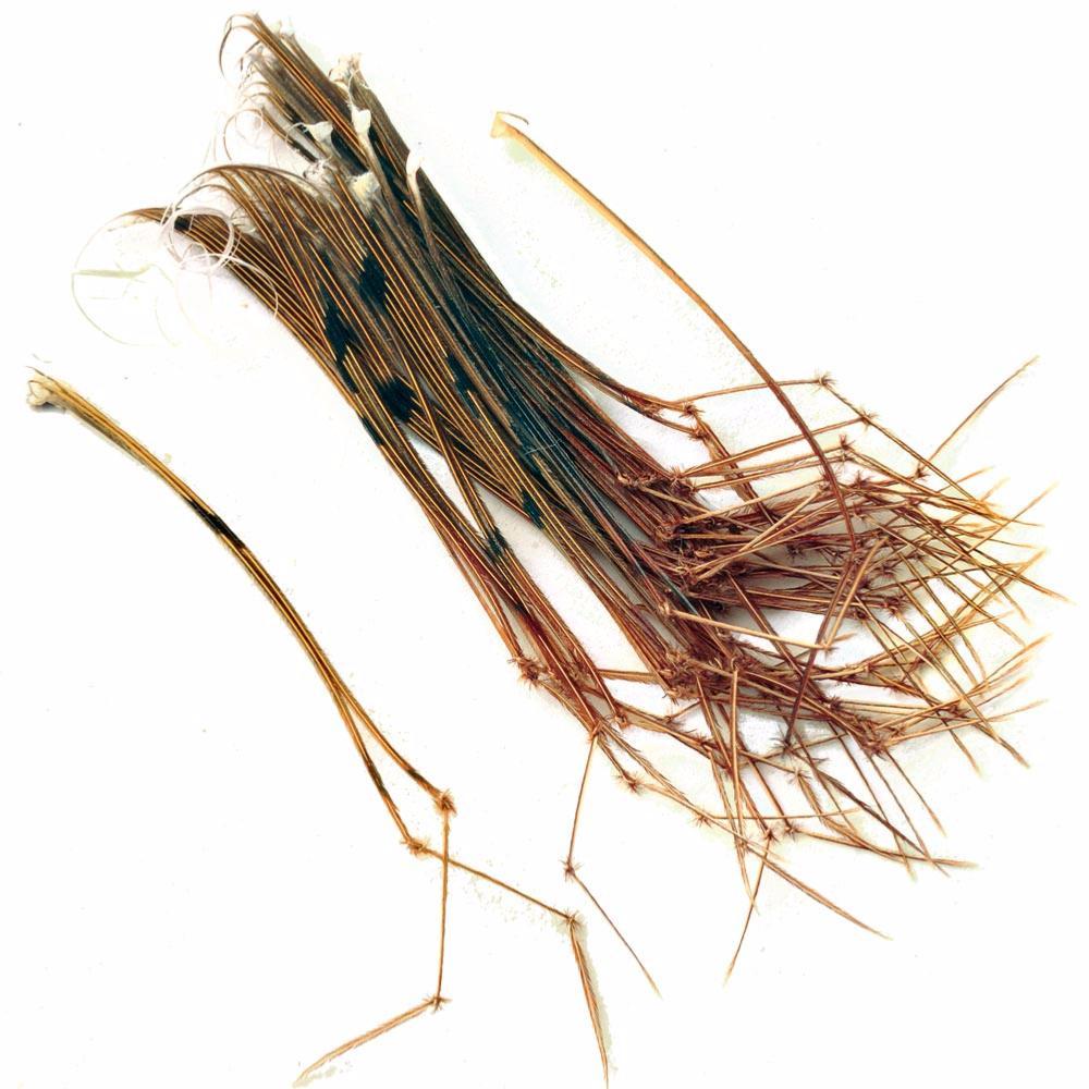 Veniard NEW Hopper Legs Fly Tying Materials