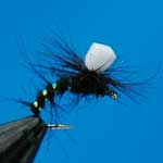 Emerger Black Parachute Suspender Trout Fishing Fly #12 (D85)