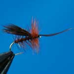 Horned Sedge Brown Special Dry Trout Fishing Fly #12 (D514)
