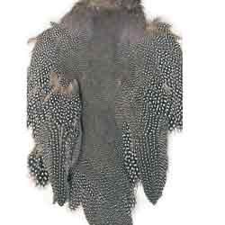 Guinea Fowl Skin Patch