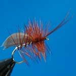 Horned Sedge Silver Special Dry Trout Fishing Fly #12 (D520)