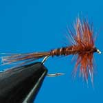 Pheasant Tail Dry Trout Fishing Fly #14 (D326)
