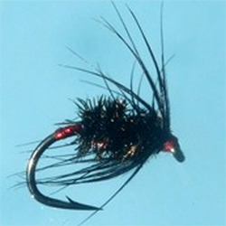 Turrall Black Peacock Red Holo Fly - DG14