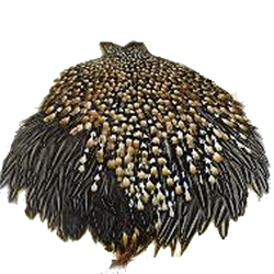 Jungle Cock - Fishermen's Feathers - Pack of 10 Feathers