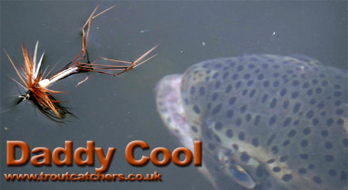 Daddy Long Legs - Crane Fly - Fishing Fly