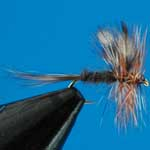 Adams Dry Trout Fishing Fly