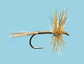 Turrall Dry Hackled Ginger Quill - Dh12