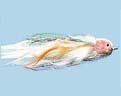 Turrall Premium Saltwater Squid - Ps25