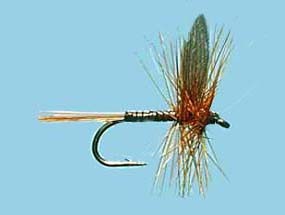Turrall Dry Winged Red Quill - Dw30