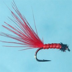 Turrall Bloodworm Micro Fly - DG16
