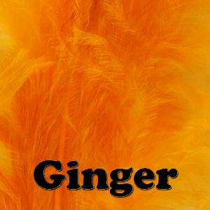 Veniard Ginger