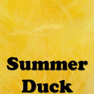 Veniard Summer Duck