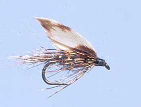 Turrall Wet Winged March Brown - Ww34