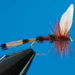 Royal Coachman Dry Trout Fishing Fly