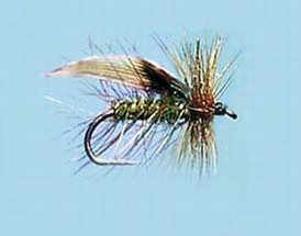 Turrall Caddis /Sedge - Green Peter - Ca20
