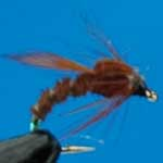Emerger Brown Buzzers Sprm Trout Fishing Fly #12 (N764)