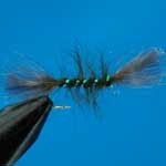 Shipmans Buzzer Olive CDC Nymph Trout Fishing Fly #12 (N812)
