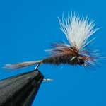 Adams Parachute Dry Trout Fishing Fly #14 (D75)