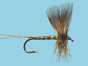 Turrall Mayfly Brown Drake - Ma01