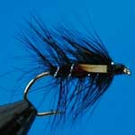 Junglecock Bibio Wet Trout Fishing Fly #10 (W158)