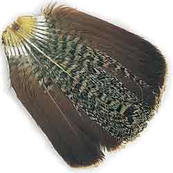 English Partridge Complete Tails