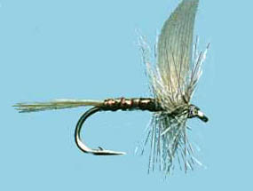 Turrall Dry Winged Blue Quill - Dw07