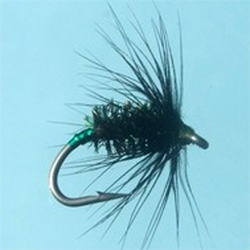 Turrall Black Peacock Green Holo Fly - DG15