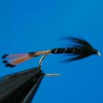 Black Pennell Wet Trout Fishing Fly