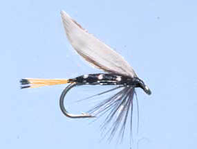 Turrall Wet Winged Blae & Black - Ww05