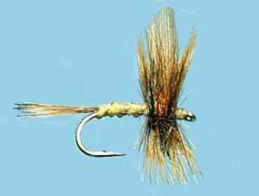 Turrall Dry Winged Greenwell's Glory - Dw18