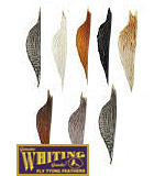 Whiting Half Cock Necks (Bronze Grade)