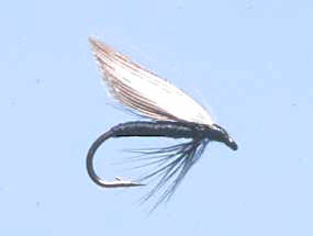 Turrall Wet Winged Black Gnat - Ww04