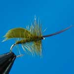 Horned Sedge Olive Special Dry Trout Fishing Fly #12 (D517)